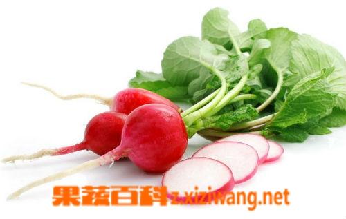 果蔬百科红色的萝卜怎么吃